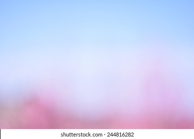blue pink blurred flower background 260nw 244816282