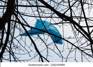 Blue plastic bag on the branches of a tree on the white sky background.  Increasing of environmental problems: plastic products pollute environment