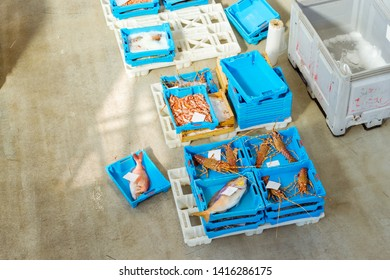 Blue plastic containers with catch of sea fish, shrimp, octopus, squid, sea delicacies. Fish auction for wholesalers and restaurants. Hangar for storage and sale of seafood. Blanes, Spain, Costa Brava