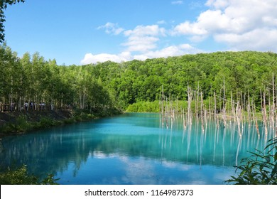 Blue Pond (Aoiike) is a man-made pond feature in Biei, Hokkaido, Japan