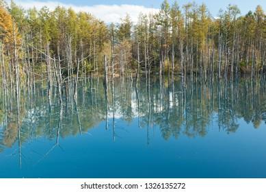 blue pond of hokkaido in japan