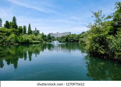 Blue pond in Inokashira Park, Kichijoji