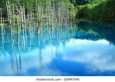 Blue pond Natural lake in Biei