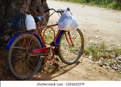 Blue and red bike leaning against a tree, with plastic bags hanging.