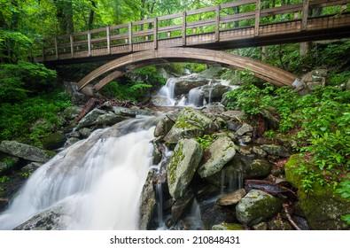 Blue Ridge Mountains Tanawha Trail Bridge Over Waterfall