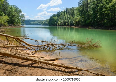 Blue Ridge, Tennessee, USA. A lagoon on a peaceful summer morning flanked by trees under blue sky in Nantahala National Forest near Blue Ridge, Tennessee, USA.