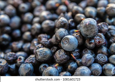 Blue ripe fresh juicy blueberry fruit background