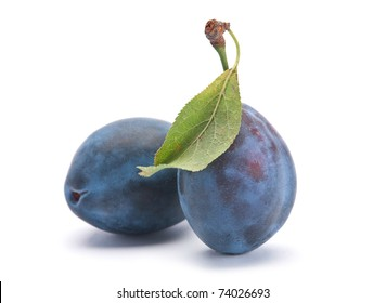 Blue ripe plum fruit closeup isolated on white
