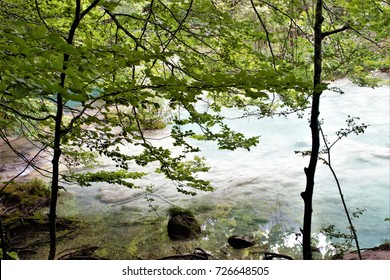 the blue river, Beech forest in summer,Natural Park Urbasa, Urederra River, Navarra, spain, peace, calm, serenity, harmony, fullness, well-being, nature,natural, contemplate, meditate, breathe, grow,
