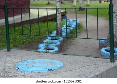A blue round sewer manhole, an iron metal fence, blue floral concrete flower beds and a white birch tree trunk on a city street in summer.