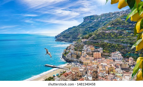 Blue sea and beach in Minori, attractive seaside town at centre of Amalfi Coast, province of Salerno, in Campania region of south-western Italy. Bunches of fresh yellow ripe lemons on foreground.