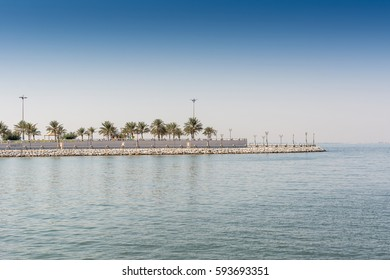 Blue sea and green date palm trees in the corniche park in Dammam, Saudi Arabia