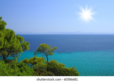 Blue sea with green trees on the beach in Croatia