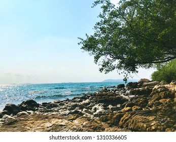 Blue sea on the sand and rocks with green trees - Image