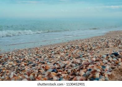 Blue sea and seashells on sand