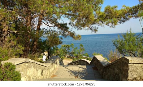 Blue sea view at the top of an old stone-cement stairs with parapets in an abandoned Foros park part. Pine tree branches hang over a staircase intermediate landing made of the cement square blocks.