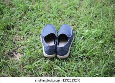 blue shoe on the grass