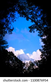 Blue skies and clouds looking out of hole in the woods
