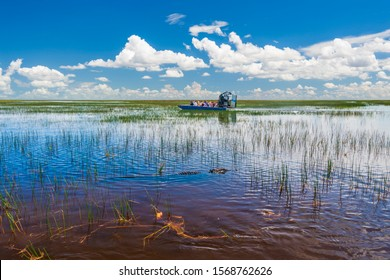 Blue skies are reflected in the still waters of the everglades while tourists take airboat rides to visit aligators in the wild