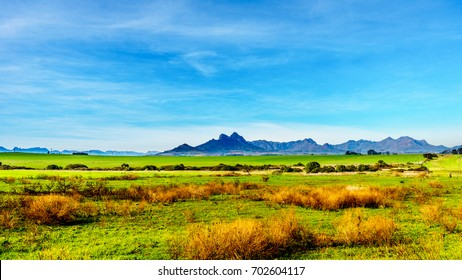 Blue skies in a South Africa winter over farm fields in the wine lands surrounding the historic town of Stellenbosch  in the Western Cape province of South Africa