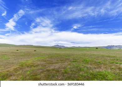 Blue skies, white clouds, green grass, & open range land dominate the landscape, near Hearst Castle, traveling the Big Sur Highway (Highway 1), on the California Central Coast, near Cambria, CA.