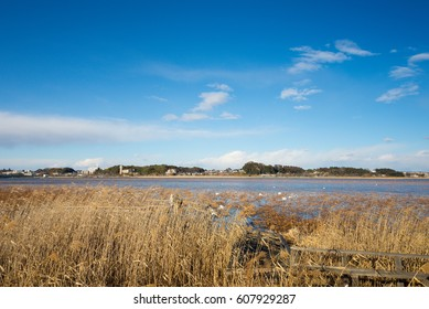 Blue Sky Around the River Taken around Teganuma which is located to Kashiwa City, Chiba Prefecture in Japan.