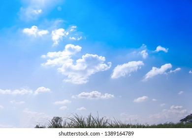 Blue sky background with white clouds group pattern , grass and treetop
