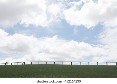 blue sky beauty and green grass