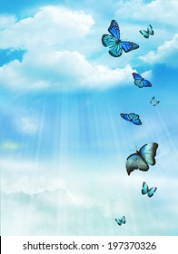 The blue sky with butterflies, background