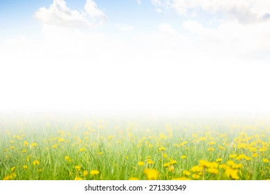 Blue sky with clouds and a field of flowers.