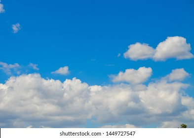 blue sky and clouds with green tree