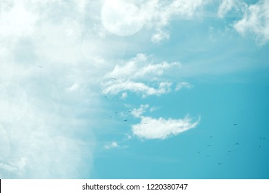 Blue Sky with Clouds on Sunny Day. Included Birds Fly and Flair Lighting