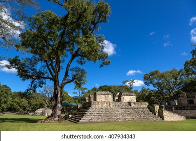 Blue sky day in the ruins of Copan in Honduras