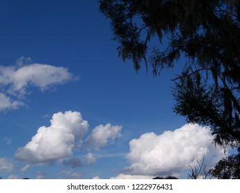 Blue sky with differently shaped white clouds