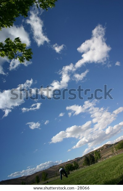 blue sky in a dynamic perspective