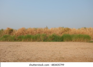 Blue sky with grass and ground
