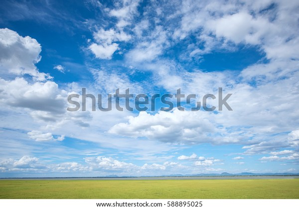 Blue sky and green grass field background