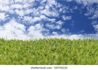 Blue sky and green grass ,for graphic background