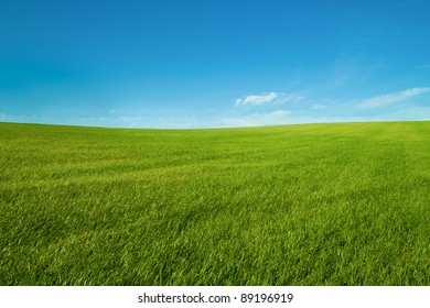 blue sky and green grass wallpaper landscape looks  like