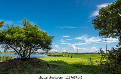 Blue sky and green plain