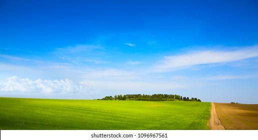 blue sky over farm green field