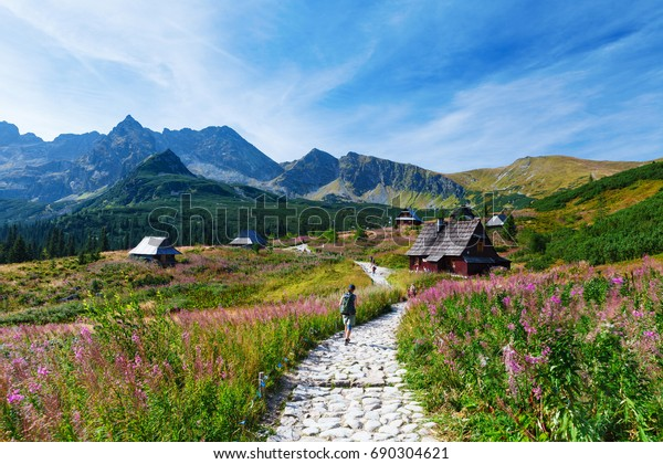 Blue sky over path through Gasienicowa Valley in Tatry mountains, Poland