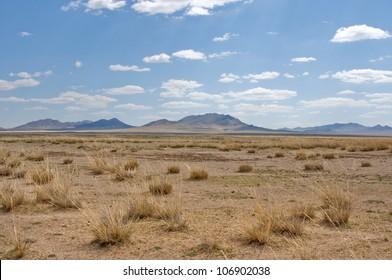 blue sky over the vast Mongolian steppes. moumtain at horizon