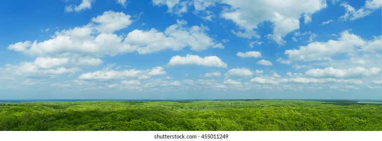 Blue sky panorama with clouds over tops of green trees