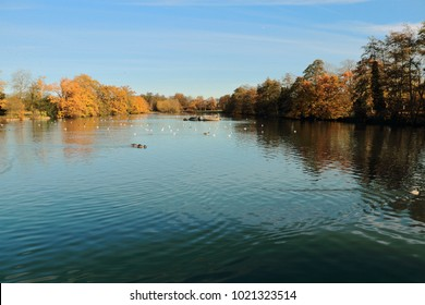 Blue sky reflection on the calm surface of a lake surrounded by trees