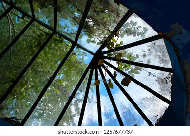 blue sky and tree branches through an old-style stained glass window, a semicircle of glass, dirty glass with garbage
