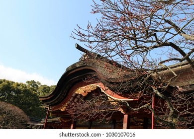 Blue sky, trees, and Dazaifu Tenmangu,in Fukuoka. Taken in February 2018.