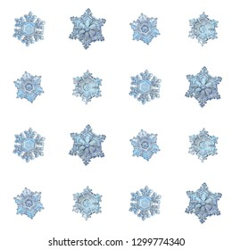Blue snowflakes isolated on white background. Macro photo of real snow crystals: elegant star plates with relief surface, short arms, fine hexagonal symmetry, ornate shapes and complex inner details.