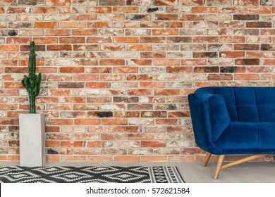 Blue sofa, rug and cactus standing on brick wall background