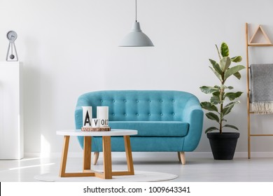 Blue sofa under grey lamp and in front of a wooden table in simple living room interior with ficus and ladder